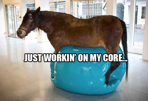 Horse Working his Core